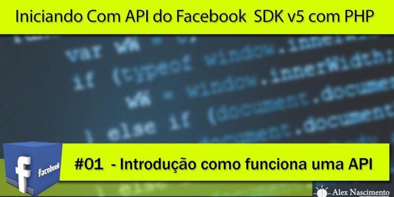 Introdução de como funciona uma API